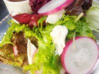 若鶏ササミとヘルシーサラダのスペシャルソース添え